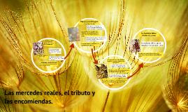 Copy of Las mercedes reales, el tributo y las encomiendas.