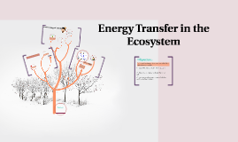 Energy Transfer in the Ecosystem