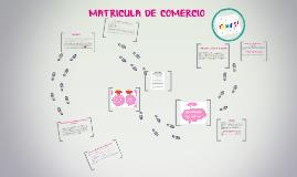 Copy of La Matrícula de comercio es la inscripción que por orden jud