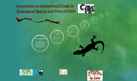 Convention on International Trade in Endangered Species and