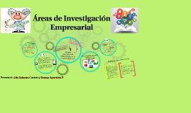 Areas de Investigación Empresarial