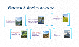 Copy of Big Idea 7 Part 2: Biomes/Environments
