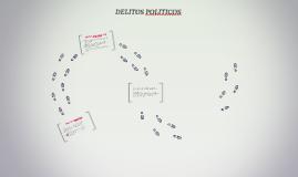 DELITOS POLITICOS
