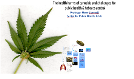 The health harms of cannabis and challenges for tobacco control
