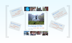 Exchange NTNU2