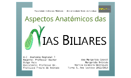 Vias Biliares