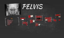 Copy of PELVIC
