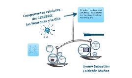 Copy of Componentes celulares del CEREBRO: las Neuronas y la Glia