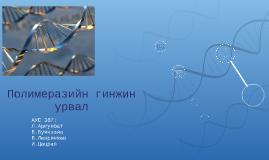 Copy of Полимеразийн гинжин    урвал