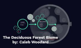 The Deciduous Biome