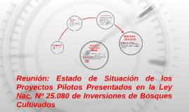 Reunión: Estado de Situación de los Proyectos Pilotos Presen