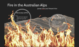 Fire in the Australian Alps