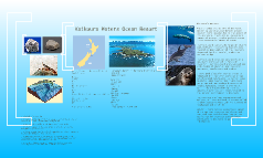 Kaikoura Waters Ocean Resort