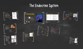 Endocrine System, Chapter 25