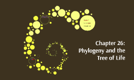 Copy of Chapter 25: Phylogeny and the Tree of Life