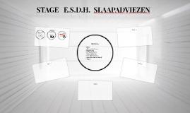 STAGE   E.S.D.H.  SLAAPADVIEZEN