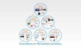 Bio 101 - Extensions to Mendelian Genetics