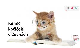 Konec kočiček v Čechách