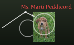 Ms. Marti Peddicord