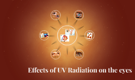 Copy of Effects of UV Radiation on the eyes