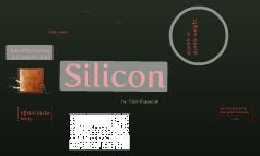 Caleb_silicon