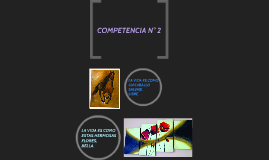 COMPETENCIA N° 2