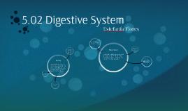 5.02 Digestive System
