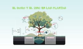 EL BORO Y EL ZINC EN LAS PLANTAS