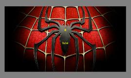 Copy of Spiderman's Hero Quest