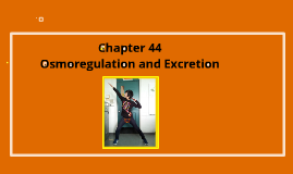 Biology Chapter 44