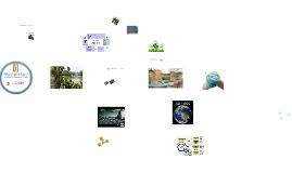Copy of Programa de gestion Ambiental