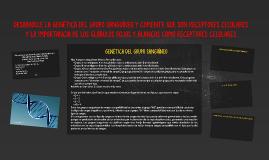DESARROLLE LA GENÉTICA DEL GRUPO SANGUÍNEO Y COMENTE QUE SON