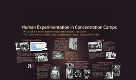 Human Experimentation in Concentration Camps