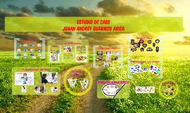 ESTUDIO DE CASO Johan Andrey Guarnizo Ariza