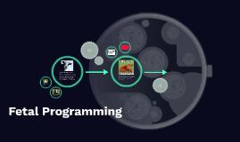 Fetal Programming