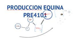 PRODUCCION EQUINA 1