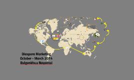 Diaspora Marketing