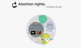 Abortion rights.