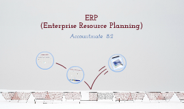 ERP (Enterprise Resource Planners)