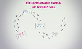 COMERCIALIZADORA AVICOLA LOS ANGELES SAS