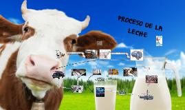 procesos de la lechita