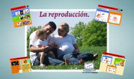 Tema 3: La reproducción. 6º EP