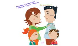Enfermería en Salud Familiar Módulo VI: Factores Familiares