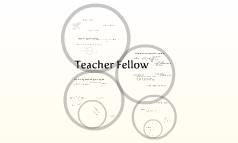 Teacher fellow