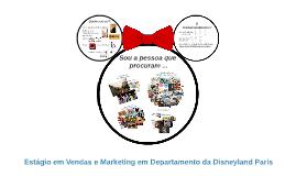 Estágio em Vendas e Marketing em Departamento da Disneyland Paris