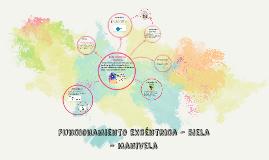 Sistema Excéntrica-Biela-Manivela