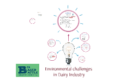 Copy of Copy of Environmental challenges