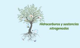 Copy of Hidrocarburos y Sustancias Nitrogenadas
