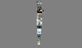 Copy of A revolução da tecnologia da informação