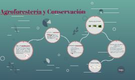Copy of Copy of Copy of Copy of Agroforestería y Conservación
